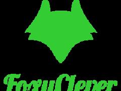 Компания FoxyClever заработок в интернете с вложением денег