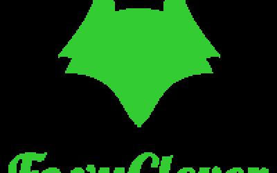 Компания FoxyClever